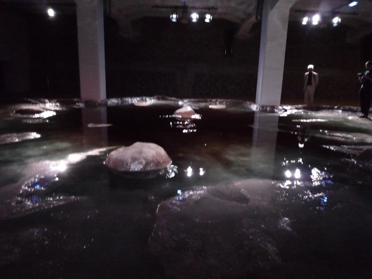 Eduardo Basualdo, Lyon Biennale