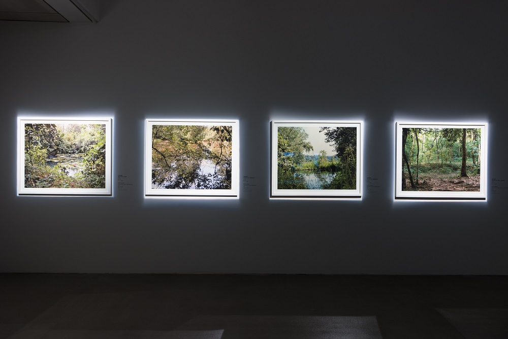 Vandy Rattana, Installation view of Bomb Ponds series