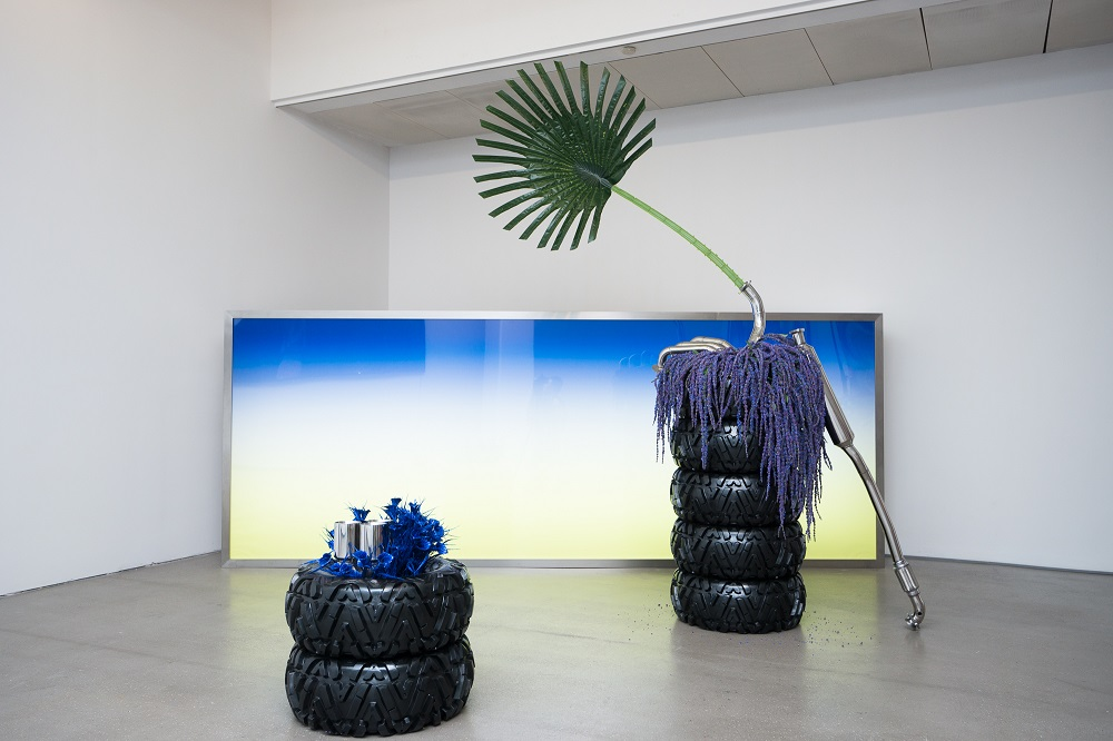 Guan Xiao, Installation view of SUNRISE