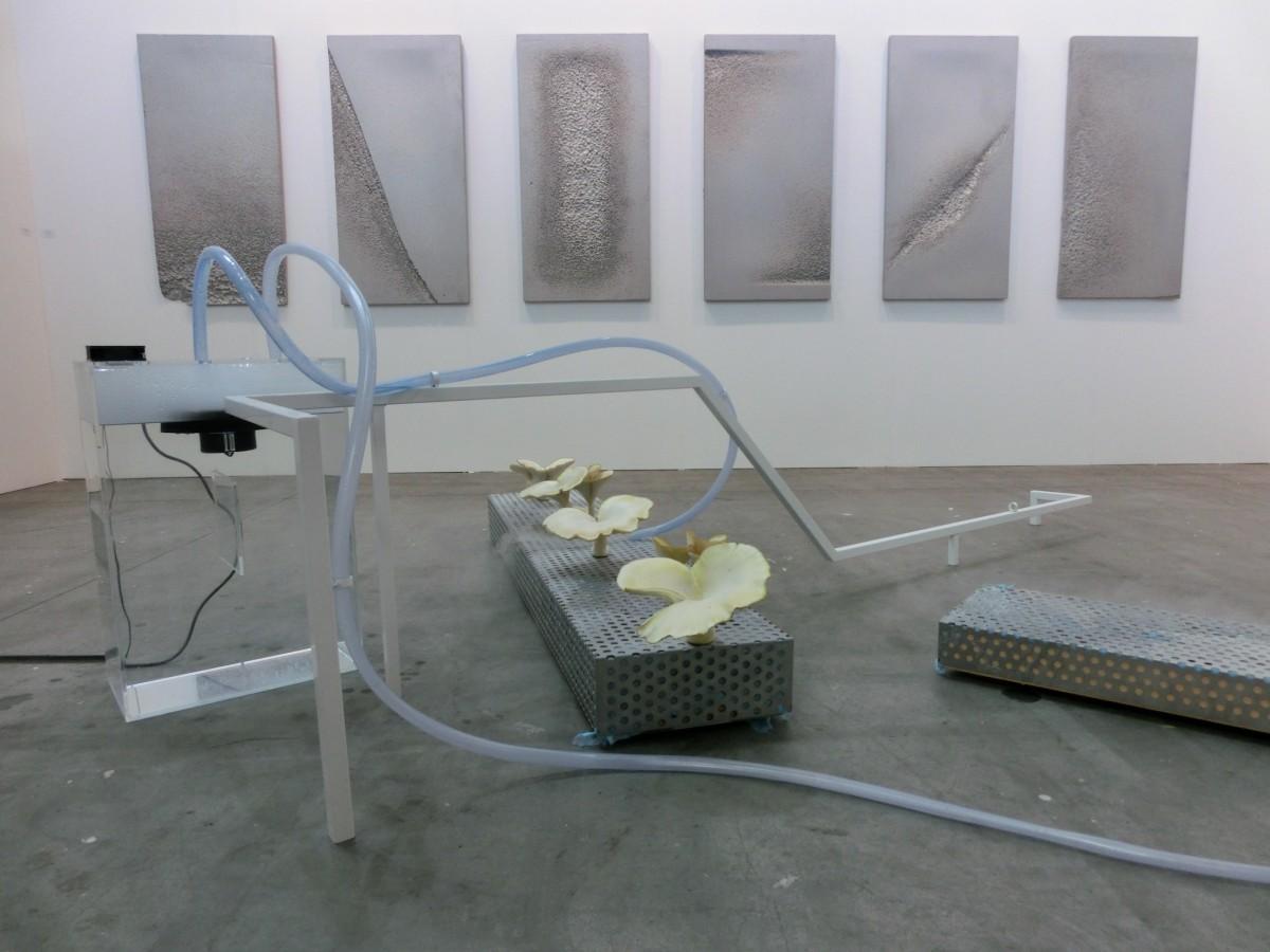Isabelle Andriessen, Galerie Cinnnamon