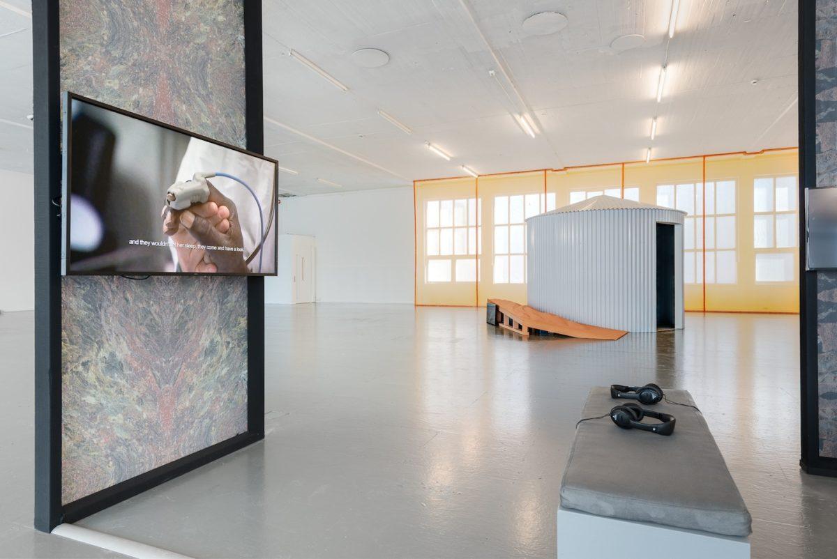Linda Persson, Foto Istvan Virag, Momentum Biennale