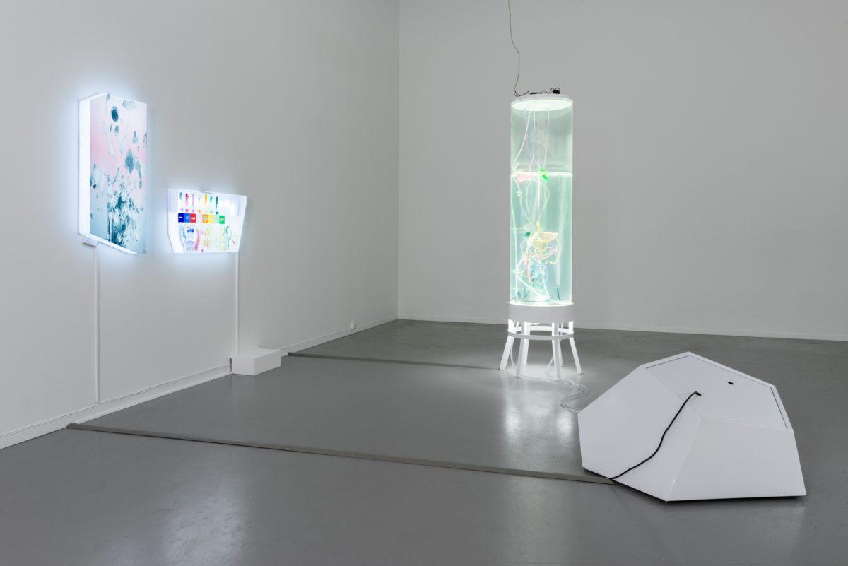 Pinar Yolda, 9. Momentum Biennale 2017
