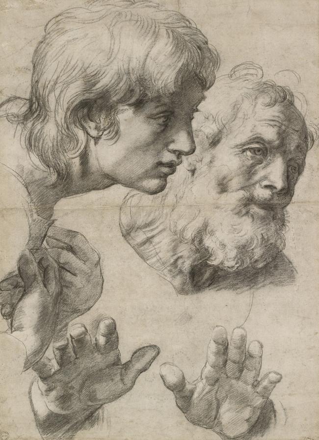 Raffael, Kopf- und Handstudie, 1519-20, Schwarze Kreide. Ashmolean Museum, Oxford © Ashmolean Museum, University of Oxford