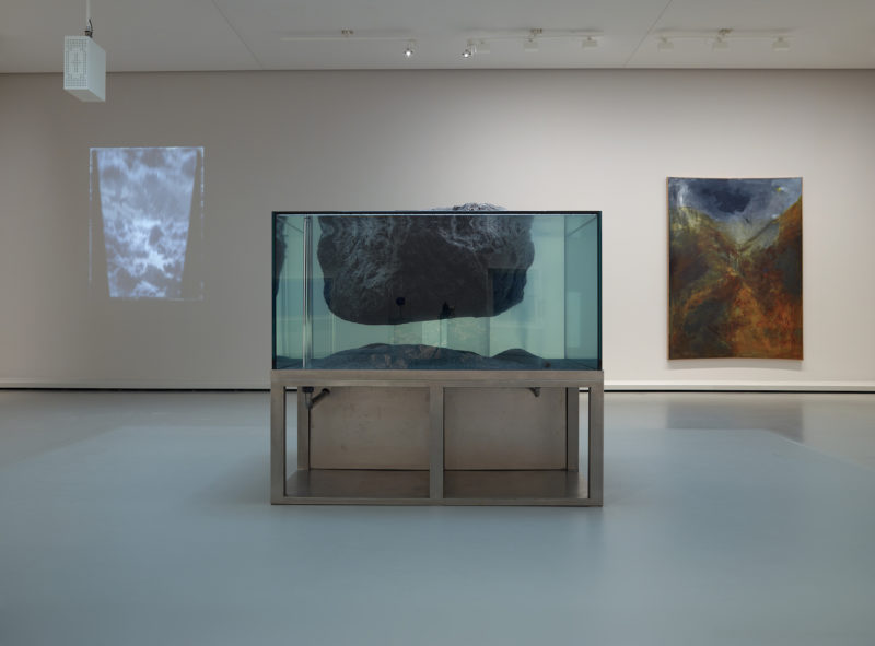 Pierre Huyghe, Thrisha Donelly, Sigmar Polke. Courtesy Fondation Louis Vuitton / Marc Domage