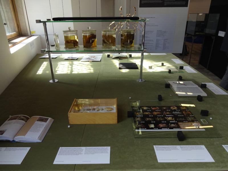 Installation von ROTOR auf der 2. Brügge Triennale // SBV