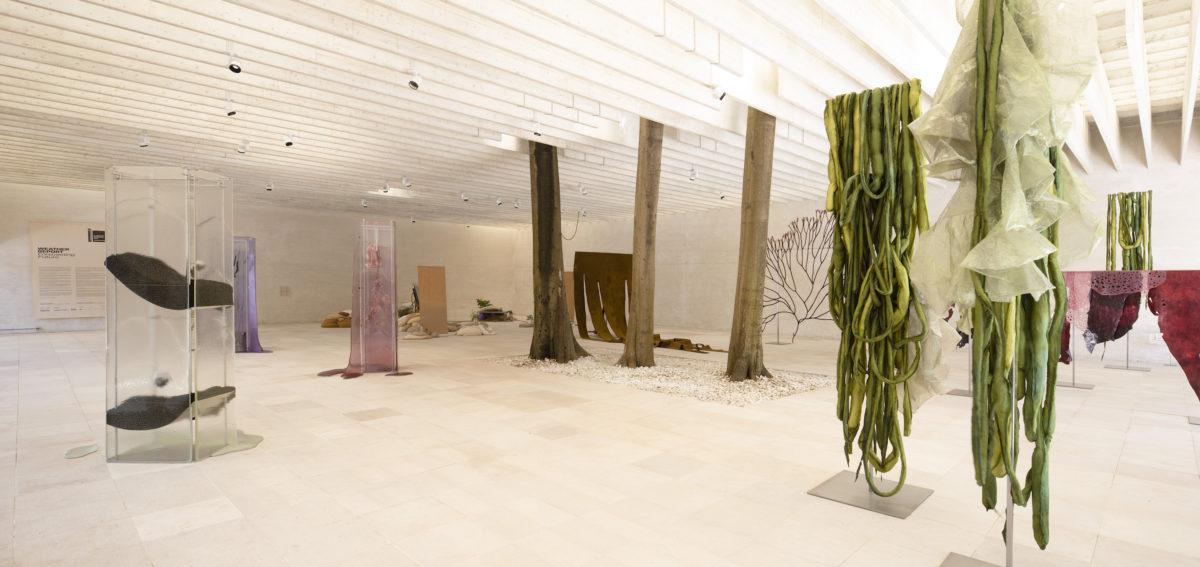 Ane Graff, Ingela Ihrman, STATES OF INFLAMMATION, 2019, AGreatSeaweed Day, 2018-2019. FotoFinnish National Gallery | Pirje Mykkänen