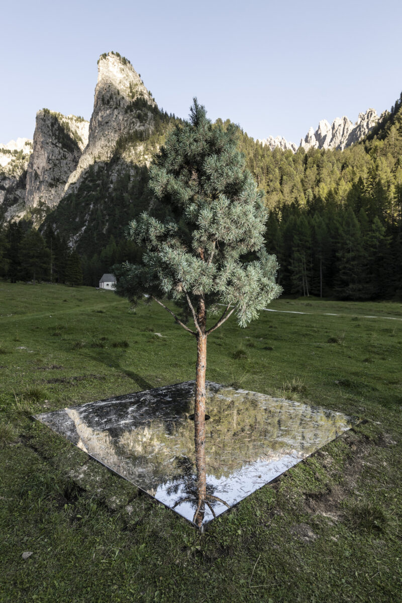 Henrik Håkansson, A Tree Mirrored (Pinus Cembra), 2020. Installation. Courtesy of the artist and Galleria Franco Noero, Torino. Ph. T.Sorvillo L.Guadagnini